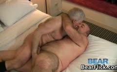Older gay bears fucking and sucking